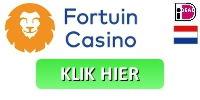 fortuin casino advies